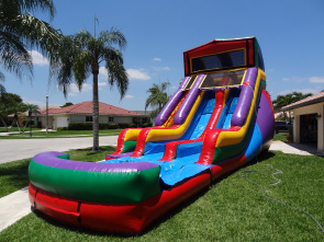 Custom Themed 2 Lane Water Slide